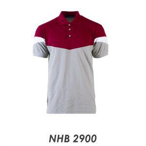 NHB 2900